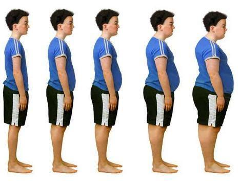 Argumentative Essay on Obesity in America - Essay Writing